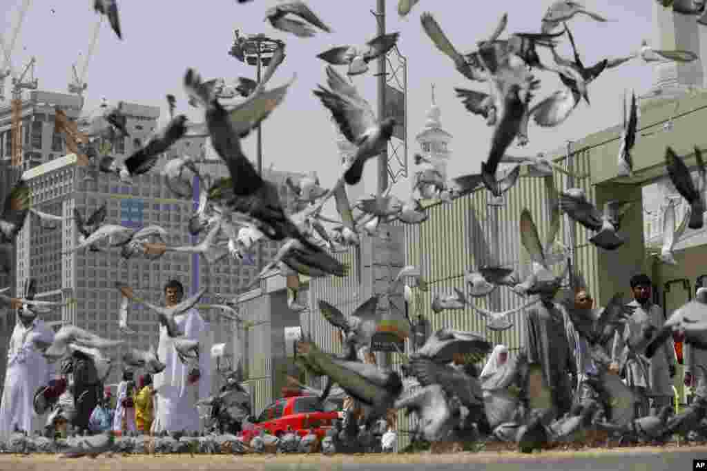 Pigeons fly around Muslim pilgrims leaving the noon prayers outside the Grand Mosque in the Muslim holy city of Mecca, Saudi Arabia.