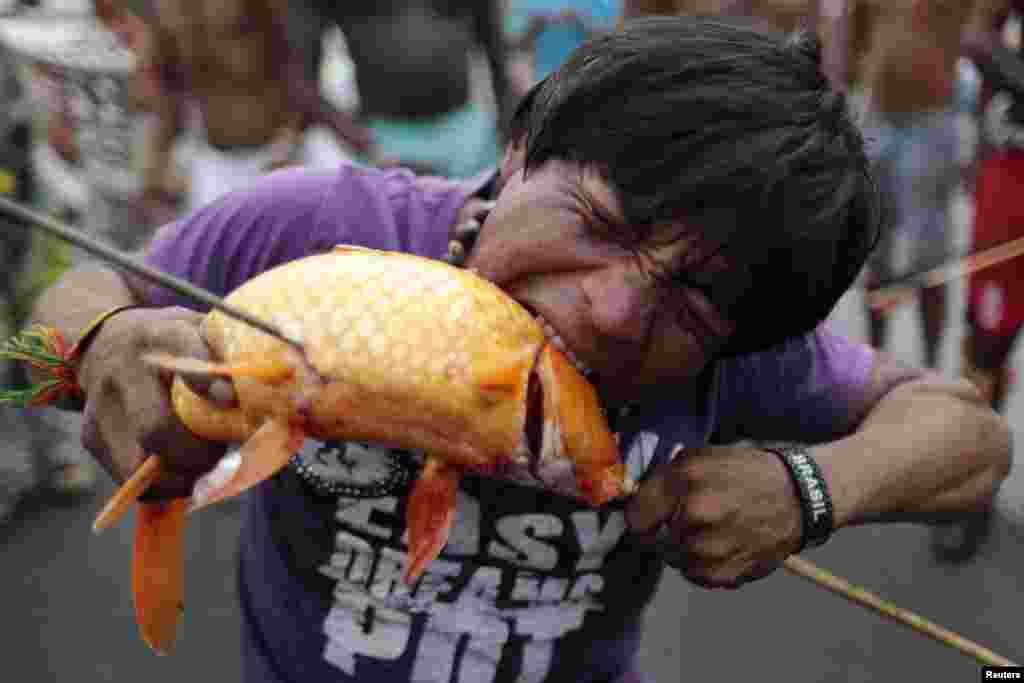 A protester bites a fish caught from the lake in front of the Justice Palace during a demonstration by indigenous Indians against proposed constitutional amendment PEC 215, which amends the rules for demarcation of indigenous lands, in Brasilia, Brazil, Oct. 2, 2013.