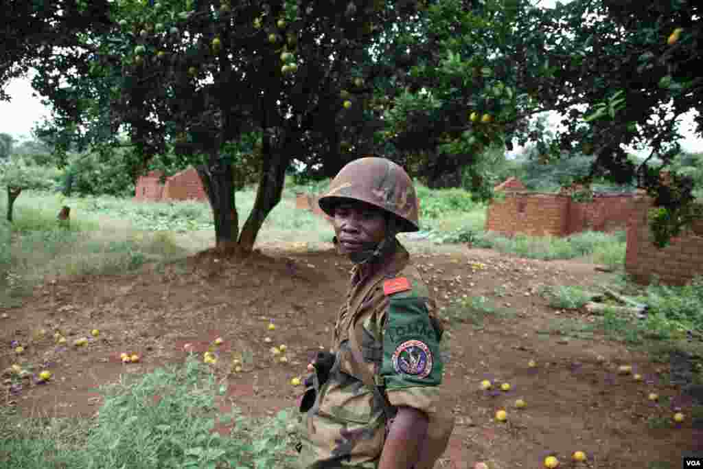 A regional peacekeeper surveys an abandoned village on the road south from bossangoa, surrounded by untouched fallen fruit, Nov. 13, 2013. (Hanna McNeish for VOA)