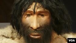 Los hombres de Neandertal se extinguieron hace unos 28 mil años, pero dejaron un rastro genético en los hombres modernos, según publicó la revista Science.