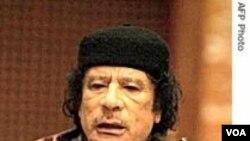 Pemimpin Libya Muammar al-Gaddafi menganjurkan warga Palestina untuk memanfaatkan momentum perubahan yang kini sedang berlangsung di Timur Tengah.