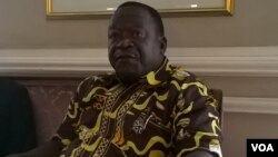 Munyori mukuru wesangano reZNLWVA, VaVictor Matemadanda