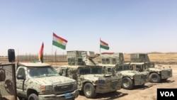 Iroqlik kurdlarning Peshmerga jangchilari