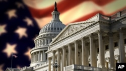 نئی امریکی کانگریس اور ٹی پارٹی اراکین
