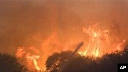 اسرائیل: جنگلات میں لگی آگ بے قابو، عالمی ماہرین حیفہ پہنچ گئے