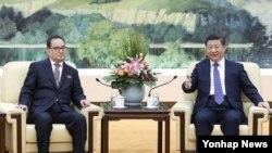 시진핑 중국 국가주석이 1일 베이징 인민대회당에서 리수용 북한 노동당 중앙위원회 부위원장과 면담했다고 관영 신화통신이 보도했다.