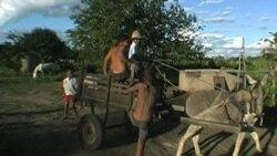 هندوستان، برزيل و آفريقای جنوبی پيشرفت چشمگيری در کاهش دادن به کار کودکان داشته اند