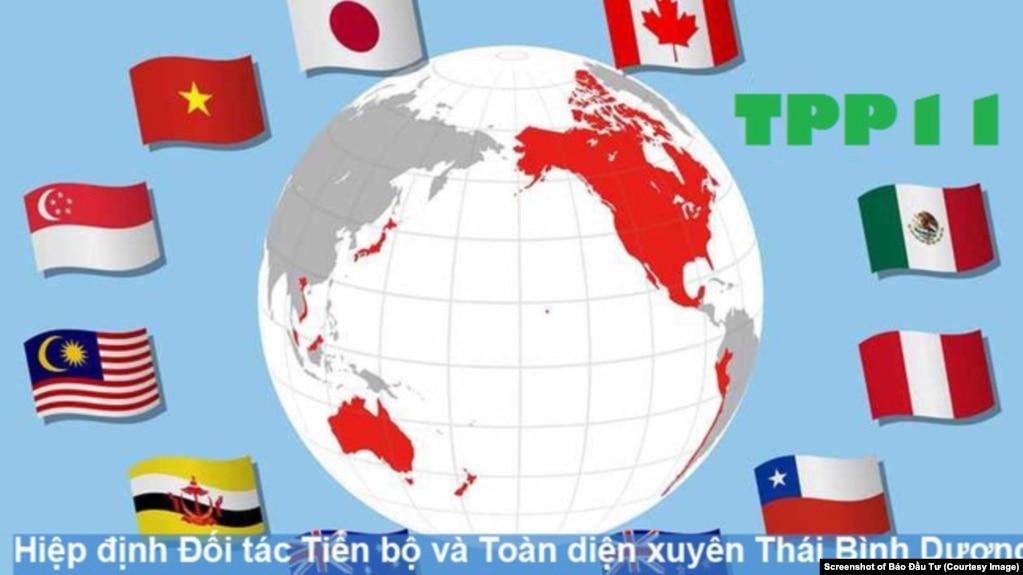 Mười một thành viên của Hiệp định Đối tác Tiến bộ và Toàn diện xuyên Thái Bình Dương sau khi Mỹ rút lui. Việt Nam sẽ phên chuẩn CPTPP vào tháng sau. (Ảnh chụp màn hình Báo Đầu Tư)