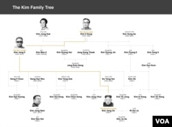 Kim Jong Nam family tree