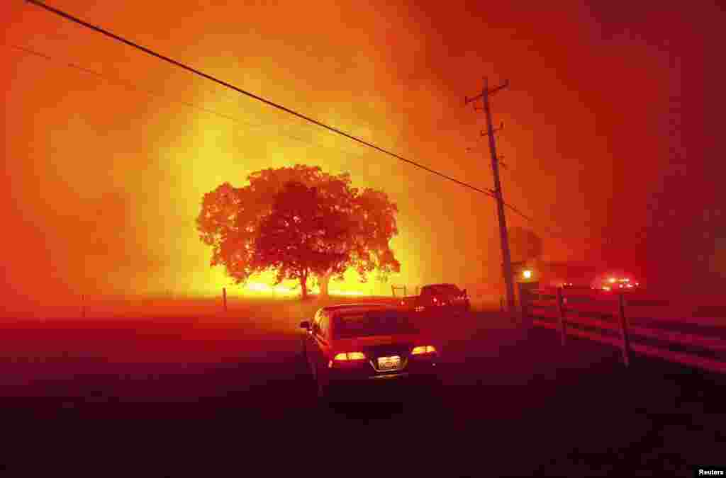 Residents flee as winds whip flames from the Morgan fire along Morgan Territory Road near Clayton, California, USA, in unincorporated Contra Costa County, Sept. 9, 2013.