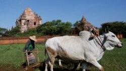 ပုဂံကို UNESCO ရဲ႕ ကမၻာ့ယဥ္ေက်းမႈ အေမြအႏွစ္စာရင္း ထည့္သြင္းမည္