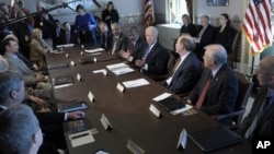 U.S. Vice President Joe Biden, center, meets with sportsmen, wildlife groups, and members of the cabinet, Jan. 10, 2013.