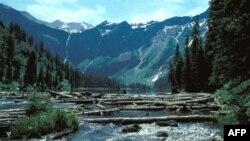 Glacier në Montana, nje kopësht skulpturash akulli