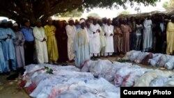 نائیجریا میں ڈاکوؤں اور ملیشیا کے درمیان جھڑپوں میں بڑے پیمانے پر پلاکتیں۔ 7 مئی 2018