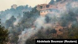 الجیریا کے پہاڑی علاقے کبائلی میں جنگلات کی آگ سے بڑے پیمانے پر نقصانات ہوئے ہیں۔10 اگست 2021