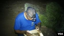 Juan Almonte revisa sedimentos en una cueva al sur de República Dominicana.