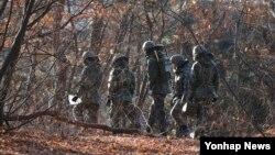 북한 군이 살포한 대남 선전용 전단이 14일 경기도 파주와 고양지역에서 대량으로 발견된 가운데 파주시 탄현면 일대에서 한국 군이 전단을 수거하기 위해 수색작업을 벌이고 있다.