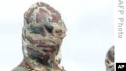 许多尼日利亚武装分子接受赦免