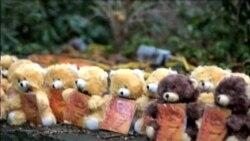 Ofensiva de familiares de víctimas de Newtown ante el Congreso de EE.UU.