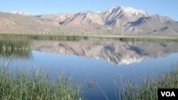مقام های محلی پیشنهاد می کنند که دشت ناور به صفت سومین پارک ملی افغانستان اعلام شود