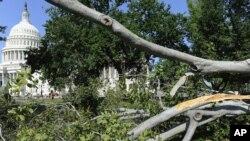 Beberapa pohon di sekitar gedung Kongres AS tumbang akibat hantaman badai kencang hari Jumat malam (29/6).