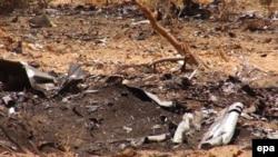 Des débris de l'avion d'Air Algérie assurant le vol AH5017, écrasé près de la ville de Goss, au nord de Bamako, au Mali, 27 juillet 2014. epa/ STR