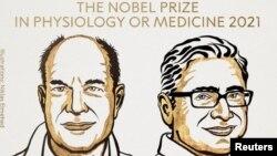 Američki naučnici David Julius i Ardem Patapoutian