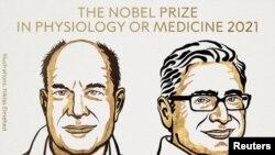 Los científicos estadounidenses David Julius y Ardem Patapoutian ganaron el Premio Nobel de Fisiología o Medicina 2021 por sus descubrimientos de receptores para la temperatura y el tacto. El premio fue anunciado este lunes 4 de octubre de 2021.