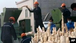 Para pekerja menghancurkan gading selundupan di Dongguan, provinsi Guangdong, China. (Foto: Dok)