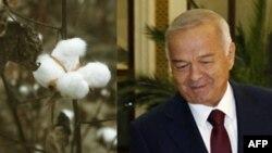 Islom Karimov va uning hukumati xalqaro qonunlarni buzib kelmoqda, deydi huquq himoyachilari