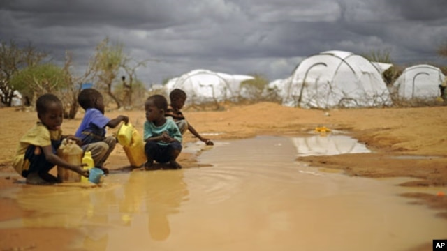 Somali boys fetch water from a puddle that formed after rain at the sprawling Dadaab refugee complex in Kenya, October 2011.
