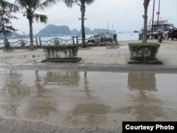 Tuyến đường chính Hạ Long ven biển trở thành ruộng bùn. Ảnh: Lê Anh Hùng.