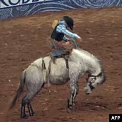 Rodeo u Hjustonu