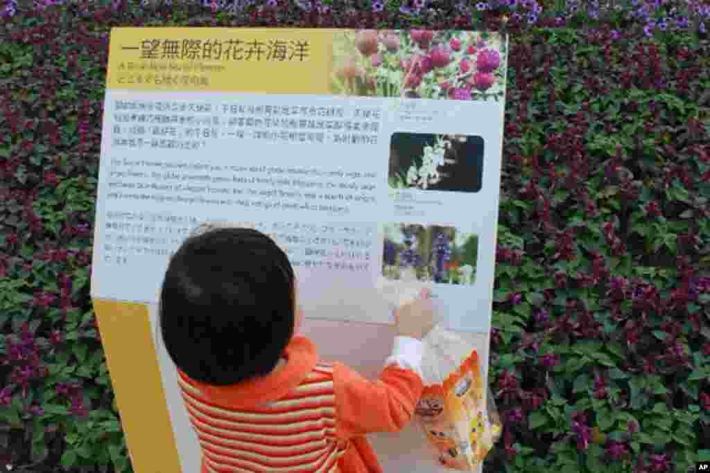 小女孩对园区内的告示板很感兴趣