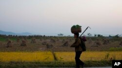 FILE - A North Korean farmer walks along a highway outside Wonsan, North Korea, Oct. 8, 2011. Prospects for crops that will be harvested in June 2019 are not promising, because of a widespread lack of rainfall and a lack of snow cover, which experts say left crops exposed to freezing temperatures during the winter.