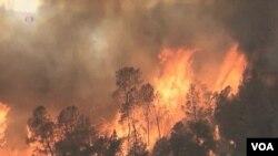Các trận cháy rừng lớn lao, thiệt hại nhiều, mấy mươi năm trước hiếm khi xảy ra như mới đây, khiến các giới chức phải tiìm cách đáp ứng