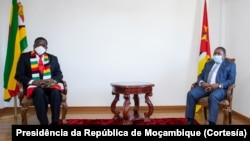 Presidents Emmerson Mnangagwa and Filipe Nyusi met recently in Mozambique where they discussed security issues.