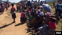 Nhengo dzeZanu PF dzakamirira kuvhota musarudzo dzekutsvaga vachamirira bato musarudzo dzenyika.