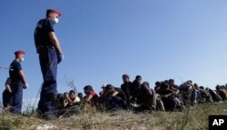 Migrants wait after crossing a border from Croatia near Hungary.