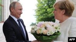 Володимир Путін і Анґела Меркель у Сочі