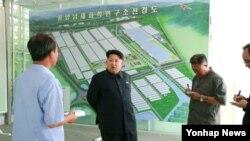 북한 김정은 국방위원회 제1위원장이 평양남새과학연구소를 방문했다고 지난 7일 조선중앙통신이 보도했다.