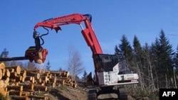 Nhiều người lo ngại đến những tác hại về môi trường mà dự án này có thể gây ra