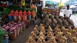 Répercussions des groupes armés sur la sécurité alimentaire au Nigeria