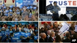 Clockwise, from top left, U.S. presidential candidates Hillary Clinton, Ted Cruz, Donald Trump and Bernie Sanders campaign in Iowa ahead of Monday's first-in-the-nation caucuses, Jan. 31, 2016.