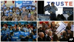 1일 열리는 미국 대통령 선거 첫 예비선거를 하루 앞둔 아이오와 주에서 경선 후보들이 선거운동을 하고 있다. 왼쪽 위부터 시계방향으로, 민주당의 힐러리 클린턴, 공화당의 테드 크루즈, 공화당의 도널드 트럼프, 민주당의 버니 샌더스 후보.
