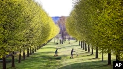 Trees are not only beautiful, they clean the air. In this 2018, photo, two boys play in a park with green blossoming trees in Frankfurt, Germany. (File Photo)