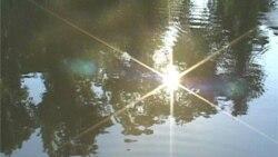 Potomac Named Most Endangered River