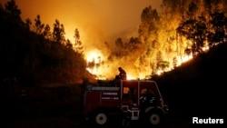 Kebakarn hutan di dekat kota Bouca, Portugal tengah, Minggu (18/6).
