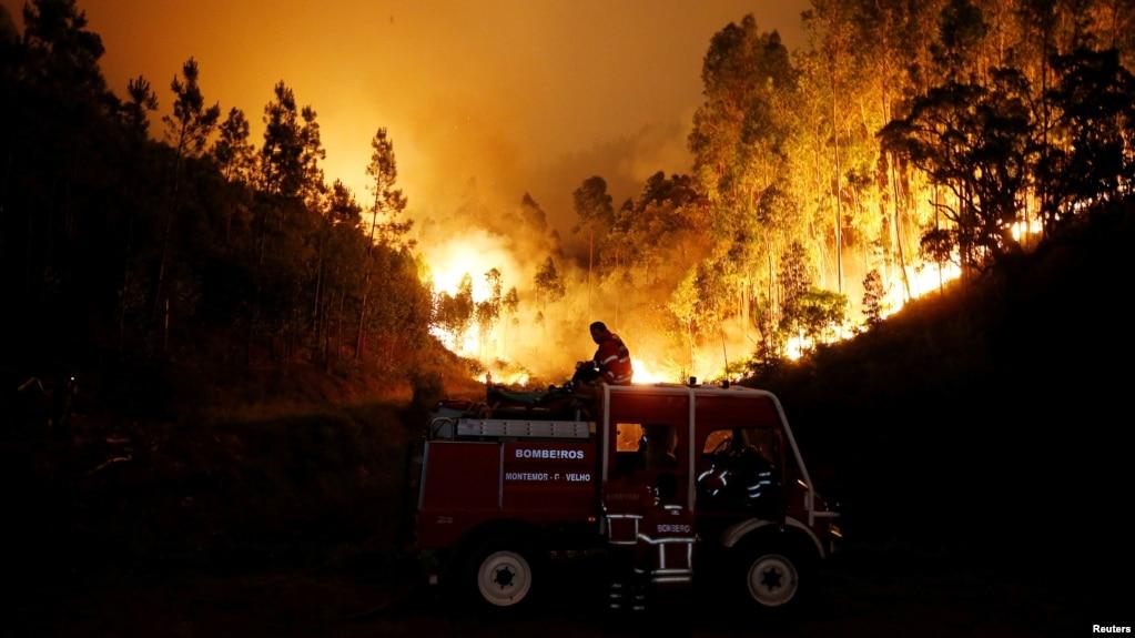 Lính cứu hỏa đang nỗ lực dập lửa gần Bouca, miền trung Bồ Đào Nha, ngày 18/6/2017.