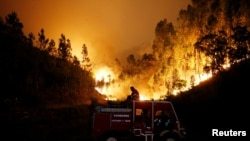 Firefighters work to put out a forest fire near Bouca, in central Portugal, June 18, 2017.